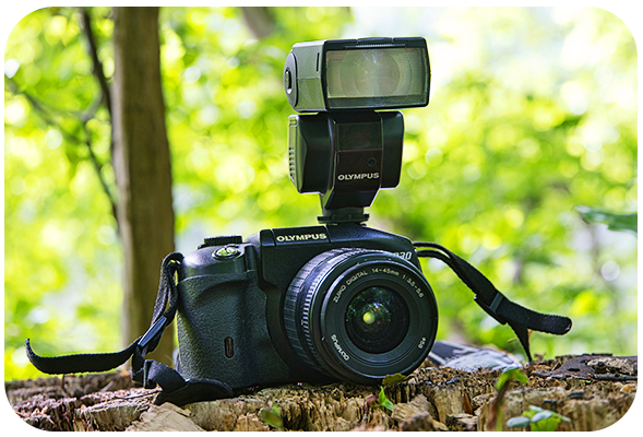 Digital Camera for Travel Photography