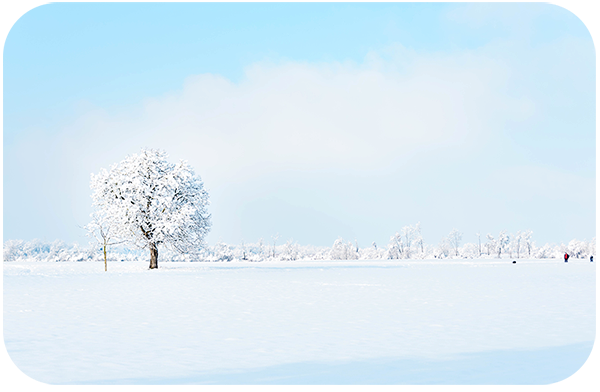 How to Shoot Photos During Winter