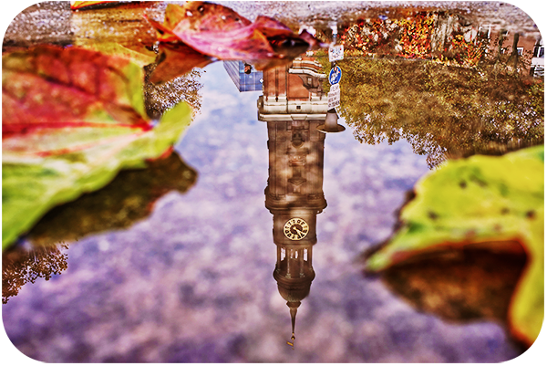 Amazing Tips for Taking Photos of Reflections