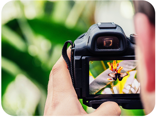 Do These Things to Be a Professional Photographer